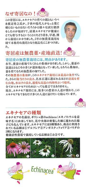 花精活性茶-3 360.jpg