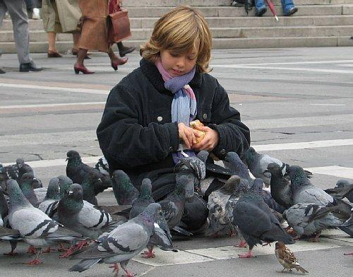 鳩と少女.jpg