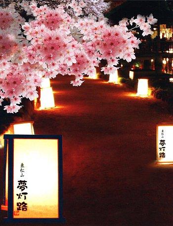 第5回東松山夢灯路_350-458.jpg