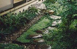 中庭(飛び石)-2rito.jpg